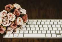 virtual bridal expo